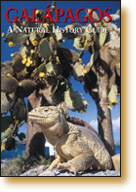 Cover of Galapagos - A Natural History Guide ISBN 978-962-217-766-6